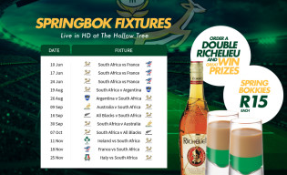 Springbok fixtures live at The Hollow Tree